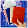 Iconic Anti Skimming Passport Case