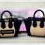 Plugy Celine Bag thumbnail 13
