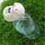 ตุ๊กตาเซรามิค แพนด้า กระต่าย หมู หมี โคอาล่า พร้อมชุดปลูกต้นไม้+เมล็ดพันธุ์ thumbnail 8