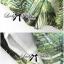 Lady Ribbon Green Leaf Jumpsuit จั๊มสูทขาสั้น พร้อมเข็มขัด thumbnail 9