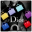Plugy Dior Bag ที่ปิดรูหูฟัง thumbnail 1