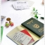 Passport Box ver.2 thumbnail 5