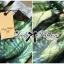 Lady Ribbon Green Leaf Jumpsuit จั๊มสูทขาสั้น พร้อมเข็มขัด thumbnail 5