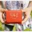 Mini Wallet กระเป๋าสตางค์ใบเล็ก พร้อมสายคล้องคอ thumbnail 5