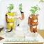 ตุ๊กตา หมี กระถางเซรามิค พร้อมชุดปลูกต้นอ่อน เมล็ดพันธุ์ Clover thumbnail 9