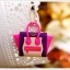 Plugy Celine Bag thumbnail 19