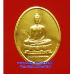เหรียญพระพุทธนวราชบพิตร หลัง ภปร. รพ.จุฬาฯ ปี 29 พร้อมกล่องครับ (506)