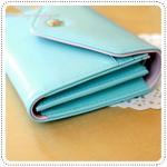 Crown Smart Pouch d - Light Blue