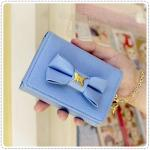 lovely mirror card case - Blue