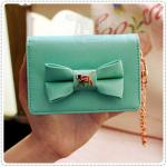 lovely mirror card case - Green