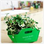 DIY Basket - Green