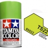 TS-22 LIGHT GREEN 100ML