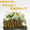 กระถางดอกไม้ My Neighbor Totoro (สวนของโตโตโร่)