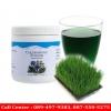 คลอโรฟิลล์ พาวเดอร์ Chlorophyll Unicity