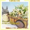 กระถางดอกไม้ My Neighbor Totoro (เมย์และโตโตโร่)