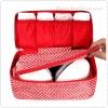 Pattern Underwear and Bra Pouch