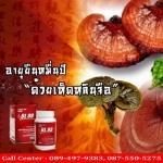 ประโยชน์ของเห็ดหลินจือแดง bl99