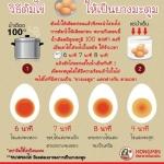 วิธีต้มไข่ให้เป็นยางมะตูม