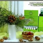 ข้อมูลเพพิ่มเติมผลิตภัณฑ์ HAYANGG COLLAGEN PLUS คอลลาเจนชนิดแคปซูล ที่ดีที่สุด..!!!
