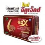 G2X จีทูเอ็กซ์
