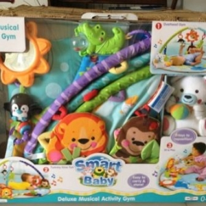 Deluxe Musical activity gym