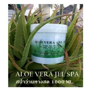 เจลสปาว่านหางจระเข้บริสุทธิ์ สำหรับบำรุงผิวหน้าและผิวกาย ( Aloe vera jel spa )