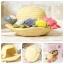 กระถางดอกไม้รูปหมวก My Neighbor Totoro thumbnail 4