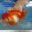ออรันดา ยักษ์ ขาวแดง thumbnail 1