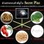 Secret Plus ซีเครท พลัส ขาว อึ๋ม สะบึม ฟิต thumbnail 8