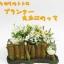 กระถางดอกไม้ My Neighbor Totoro (สวนของโตโตโร่) thumbnail 1