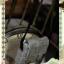 [Alice in Wonderland] Mad Hatter 2012 - MSD VER. thumbnail 8