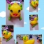 Rocking duck เป็ดโยกเยก+เป็ดขาไถ thumbnail 1