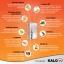 Kalow ผลิตภัณฑ์อาหารเสริมลดน้ำหนัก แกลโล thumbnail 6