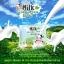 Milk Green Tea Soap 65 g. สบู่น้ำนม ผสมสารสกัดจากชาเขียว thumbnail 2