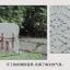 กระเป๋าเป้ยี่ห้อ SUPER LOVER2014 กระเป๋าเป้หญิงป่าสงวนแห่งชาติ รุ่นนี้ขายดี (Pre-Order) thumbnail 6