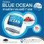 Feora Blue Ocean ฟิโอร่า บลู โอเชียน คอลลาเจน รสเบอร์รี่ thumbnail 14