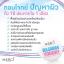 Merci Bulgarian Yogurt Whitening Cream Mask 30 g. เมอร์ซี่ บัลแกเรียน โยเกิร์ต มาส์ค thumbnail 8