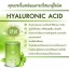 Aun-yeongg Collagen 20,000 mg. อันยอง คอลลาเจน เติมความชุ่มชื้นให้ผิว thumbnail 12