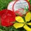 Tomato Blink Serum 50 g. โทเมโท บริ้งค์ เซรั่ม เจลบำรุงผิวมะเขือเทศ thumbnail 2