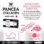 Pancea Collagen แพนเซีย คอลลาเจน thumbnail 14