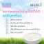 Merci Bulgarian Yogurt Whitening Cream Mask 30 g. เมอร์ซี่ บัลแกเรียน โยเกิร์ต มาส์ค thumbnail 6