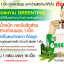 Greentina Plus+ ผลิตภัณฑ์เสริมอาหารควบคุมน้ำหนัก กรีนติน่า พลัส thumbnail 8