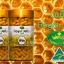Nature's King Royal Jelly เนเจอร์ คิง รอยัล เจลลี่ นมผึ้ง นำเข้าจากออสเตรเลีย thumbnail 7