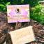 Tumeric Soap 70 g. สบู่ขมิ้น ผิวขาว ผิวขาว ปลอดภัย ด้วยสมุนไพรไทย 100% thumbnail 2