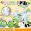 Milk Green Tea Soap 65 g. สบู่น้ำนม ผสมสารสกัดจากชาเขียว thumbnail 7