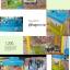 ตู้คีบลูกกวาดหรือตุ๊กตา พร้อมรีโมท thumbnail 1
