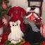 [PRE-ORDER] Christmas Alice MSD ver. thumbnail 9