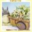 กระถางดอกไม้ My Neighbor Totoro (เมย์และโตโตโร่) thumbnail 1