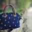 กระเป๋าถือสะพายข้างยี่ห้อ Super Lover ดอกไม้ญี่ปุ่น (Pre-Order) thumbnail 12