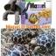 อาหารเต่าบก มาซูริ (Mazuti tortoise Food) thumbnail 1